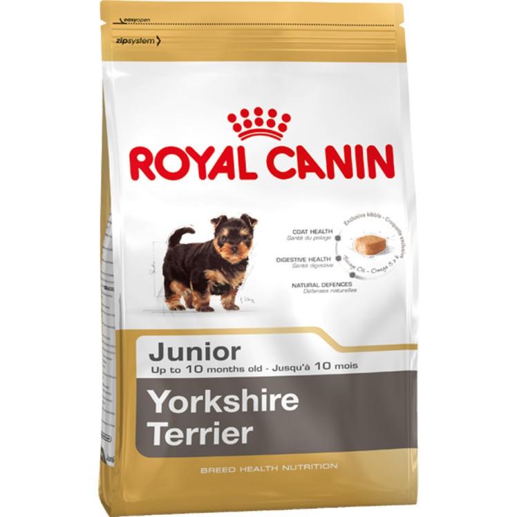 RoyalCaninJuniorYorkshireTerrier_1024x1024