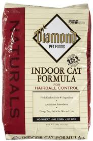 Diamond Indoor Cat