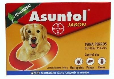 asuntol_