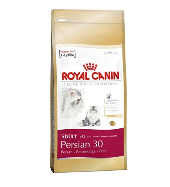 royal canin persa