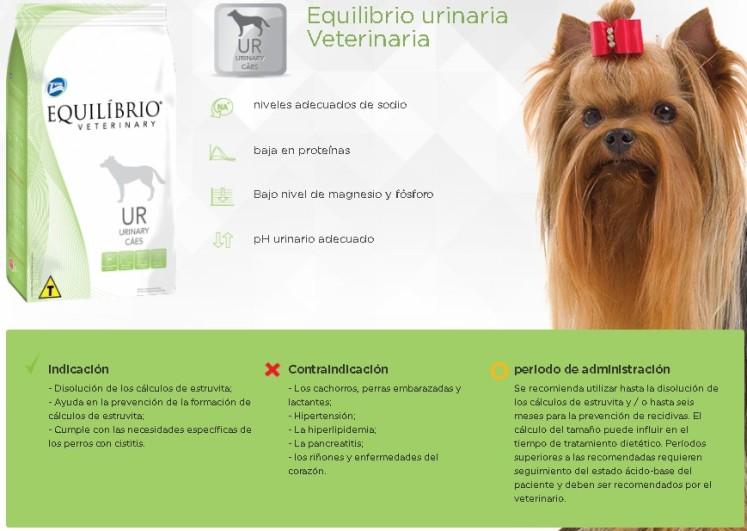 EQUILIBRIO URINARY