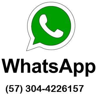 whatsapp 304